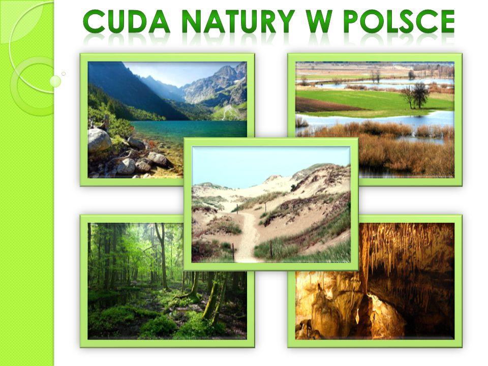 Krutynia to jeden z najpiękniejszych szlaków wodnych w Europie Środkowej.