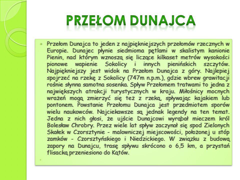 Przełom Dunajca to jeden z najpiękniejszych przełomów rzecznych w Europie. Dunajec płynie siedmioma pętlami w skalistym kanionie Pienin, nad którym wz