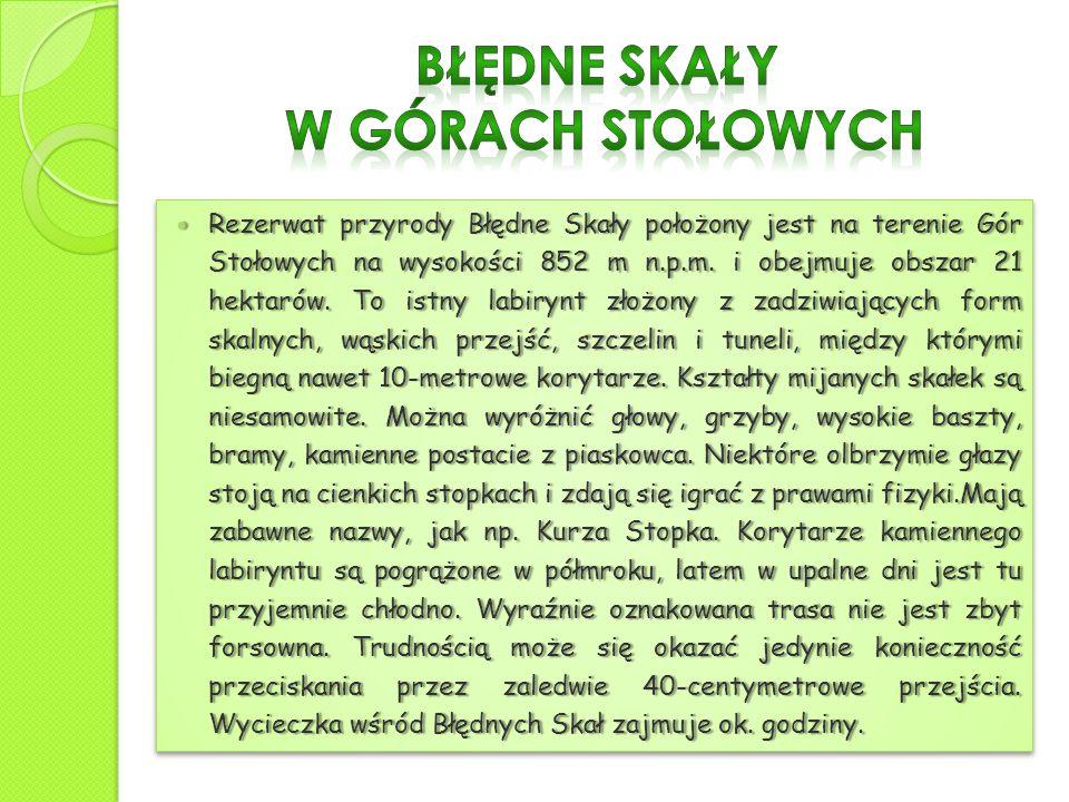 Rezerwat przyrody Błędne Skały położony jest na terenie Gór Stołowych na wysokości 852 m n.p.m. i obejmuje obszar 21 hektarów. To istny labirynt złożo
