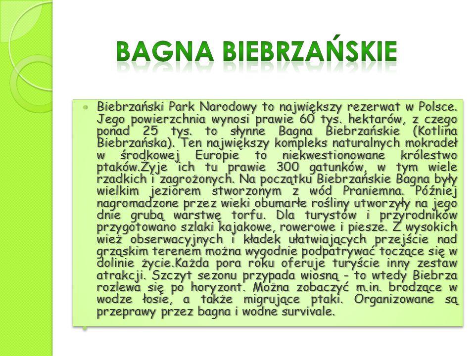 Biebrzański Park Narodowy to największy rezerwat w Polsce. Jego powierzchnia wynosi prawie 60 tys. hektarów, z czego ponad 25 tys. to słynne Bagna Bie