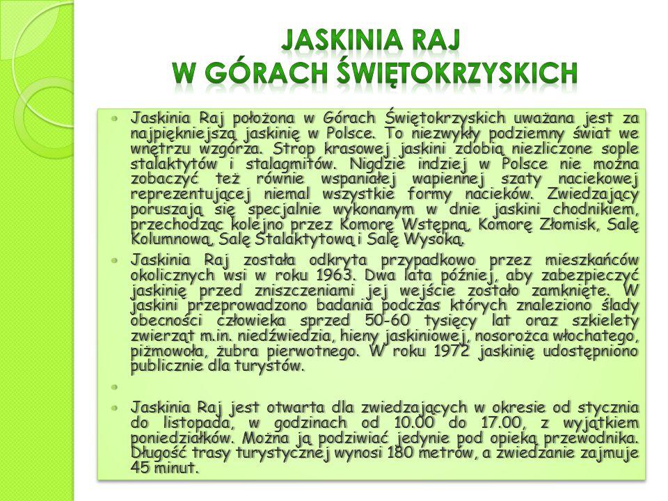 Jaskinia Raj położona w Górach Świętokrzyskich uważana jest za najpiękniejszą jaskinię w Polsce.
