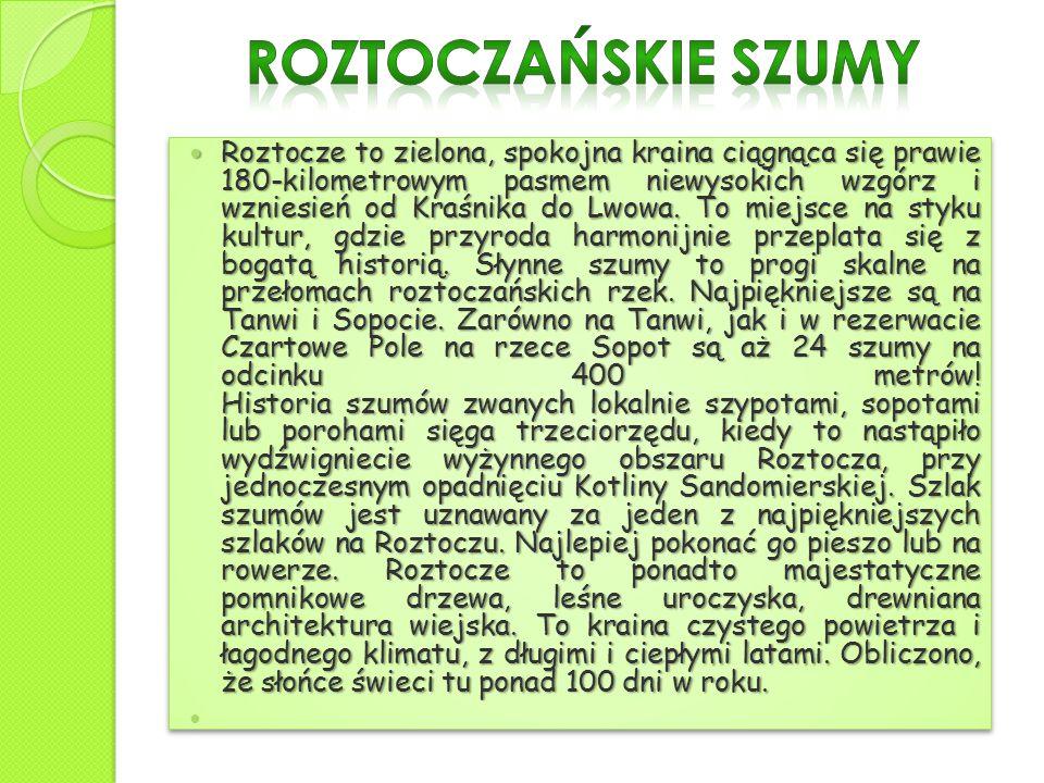 Roztocze to zielona, spokojna kraina ciągnąca się prawie 180-kilometrowym pasmem niewysokich wzgórz i wzniesień od Kraśnika do Lwowa. To miejsce na st