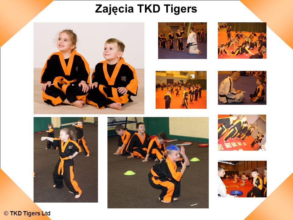 © TKD Tigers Ltd Zajęcia TKD Tigers