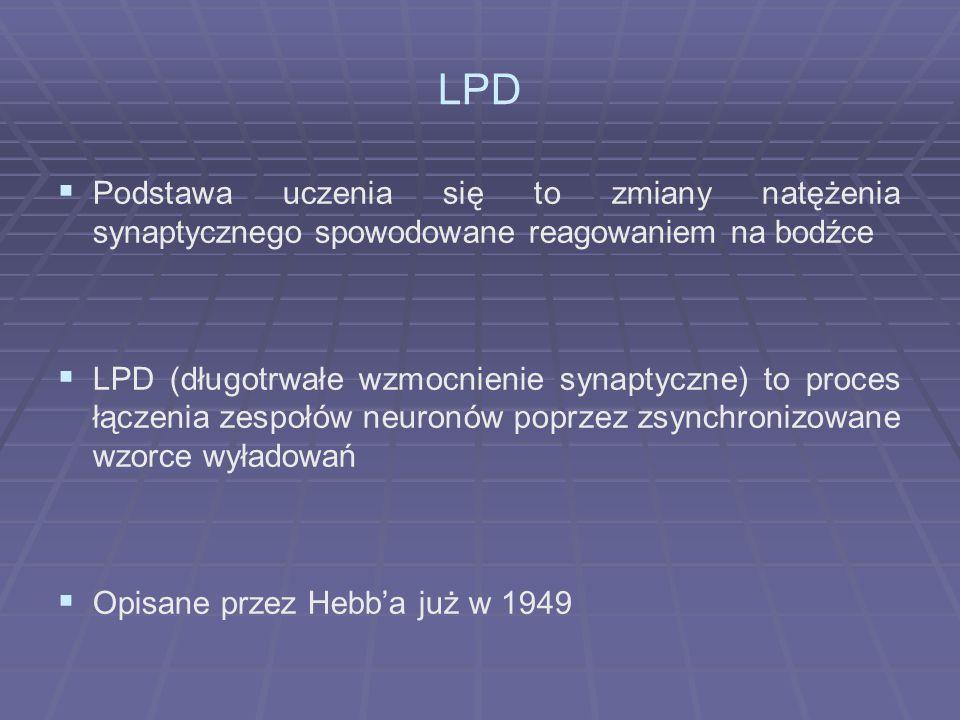 LPD  Podstawa uczenia się to zmiany natężenia synaptycznego spowodowane reagowaniem na bodźce  LPD (długotrwałe wzmocnienie synaptyczne) to proces łączenia zespołów neuronów poprzez zsynchronizowane wzorce wyładowań  Opisane przez Hebb'a już w 1949