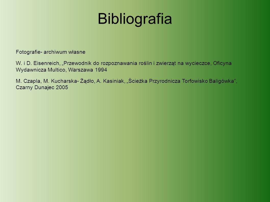 Bibliografia Fotografie- archiwum własne W. i D.