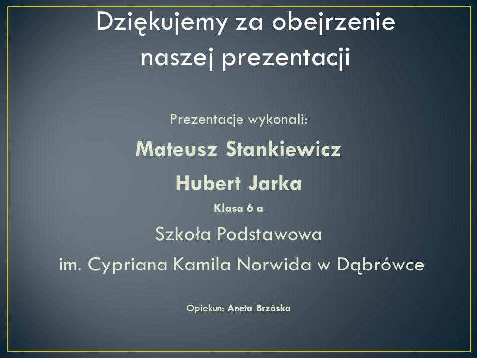 Prezentacje wykonali: Mateusz Stankiewicz Hubert Jarka Klasa 6 a Szkoła Podstawowa im. Cypriana Kamila Norwida w Dąbrówce Opiekun: Aneta Brzóska Dzięk