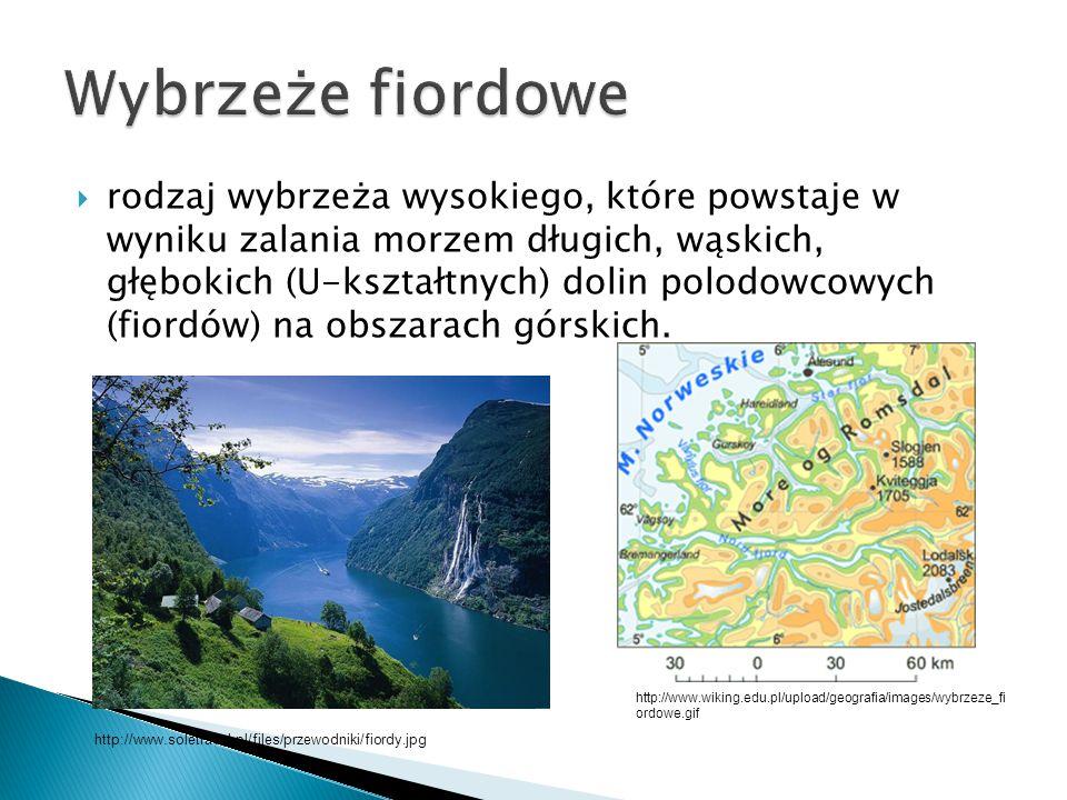  powstało poprzez zalanie pasm górskich ciągnących się równolegle do brzegu morza; kulminacje grzbietów twą łańcuchy wysp (np.