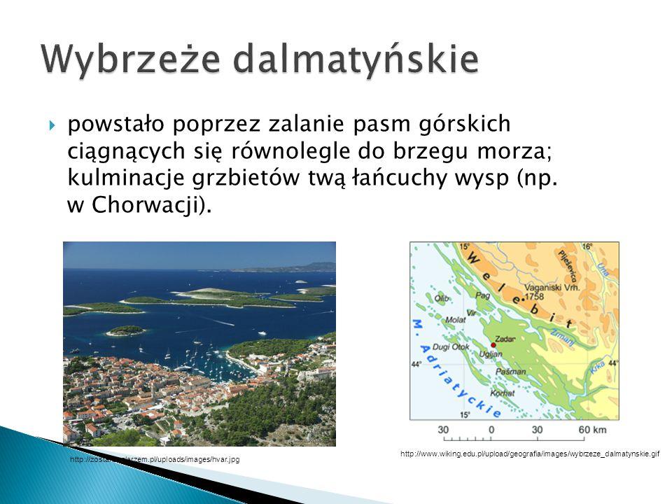  wybrzeże na skraju obszaru górskiego lub wyższego, rozcięte przez głębokie doliny rzeczne będące obecnie zatokami.