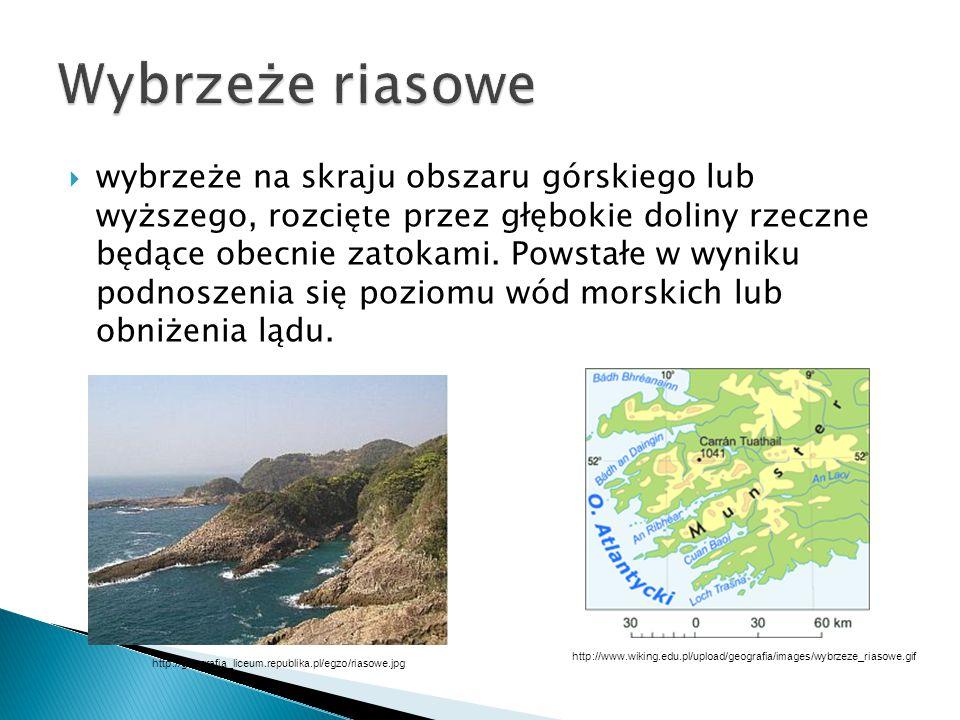  rodzaj wybrzeża morskiego, powstałego w wyniku częściowego zatopienia obszaru polodowcowego  Charakteryzuje się obecnością setek małych, sterczących wysepek, zwanych szkierami.