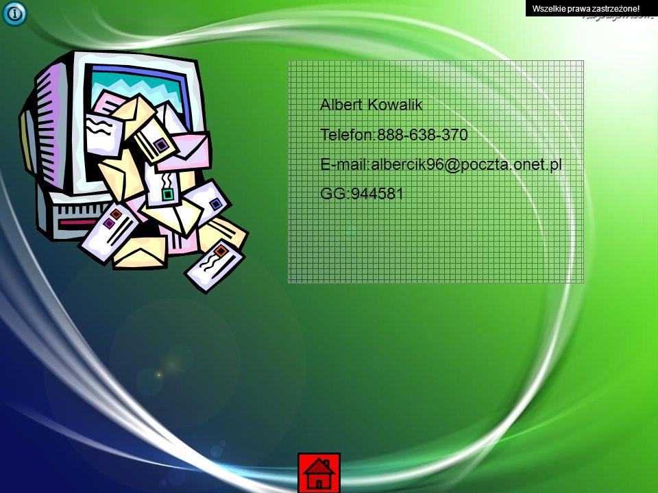 Wszelkie prawa zastrzeżone! Silnik przeglądarki internetowej - silnik wyświetlania strony internetowe wykorzystywane głównie przez przeglądarki intern