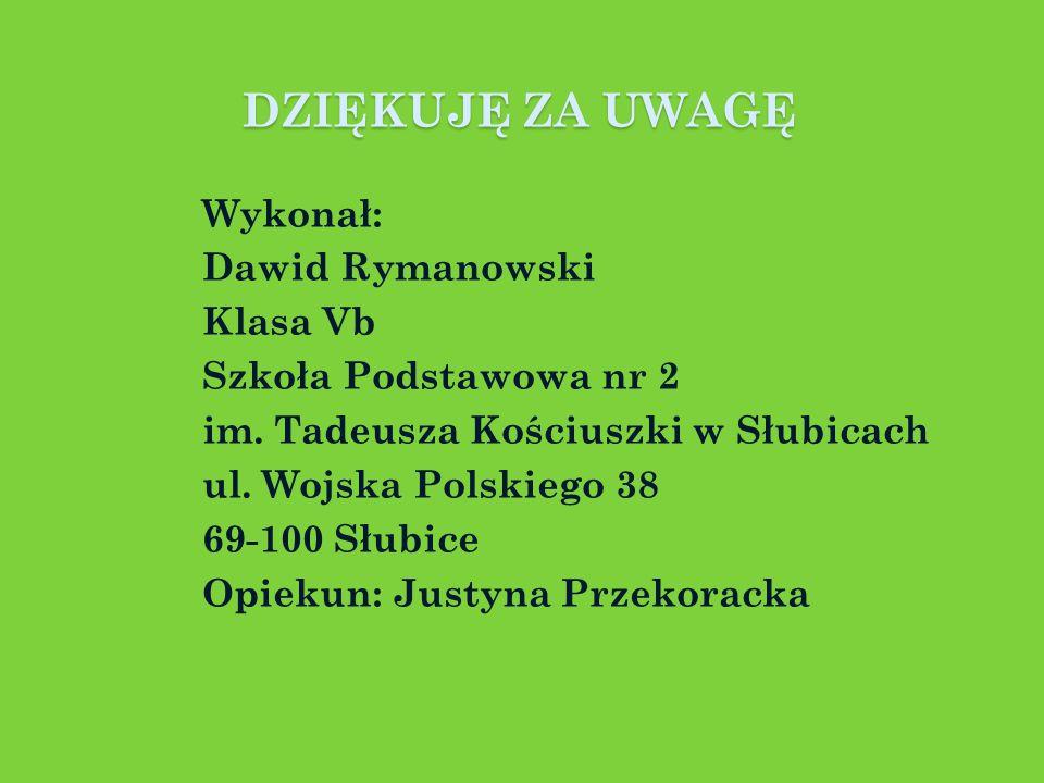 DZIĘKUJĘ ZA UWAGĘ Wykonał: Dawid Rymanowski Klasa Vb Szkoła Podstawowa nr 2 im.