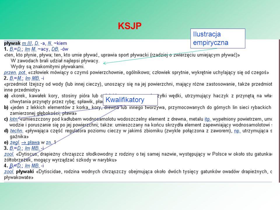 29 KSJP Ilustracja empiryczna Kwalifikatory