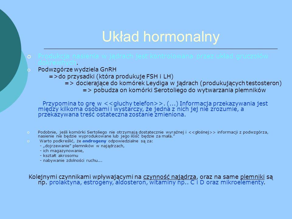 Układ hormonalny PProdukcja nasienia w jądrach jest kontrolowana przez układ gruczołów dokrewnych.