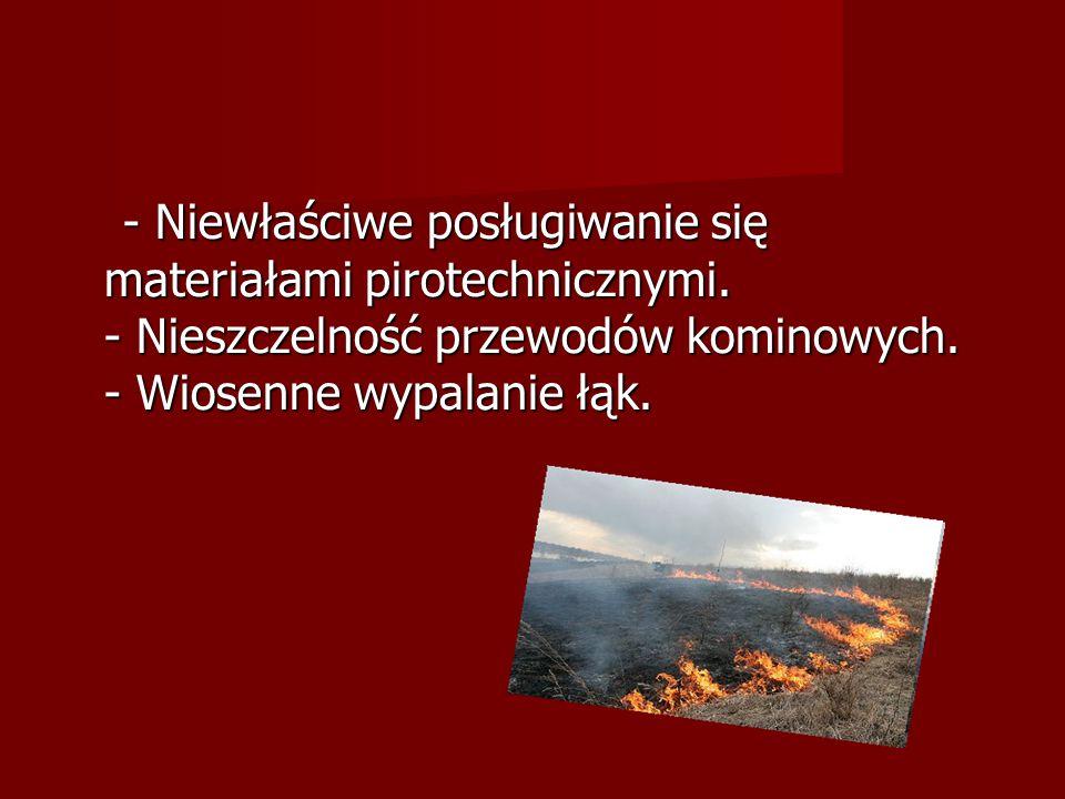 - Rozpalanie ognisk w lasach zwłaszcza podczas suszy.