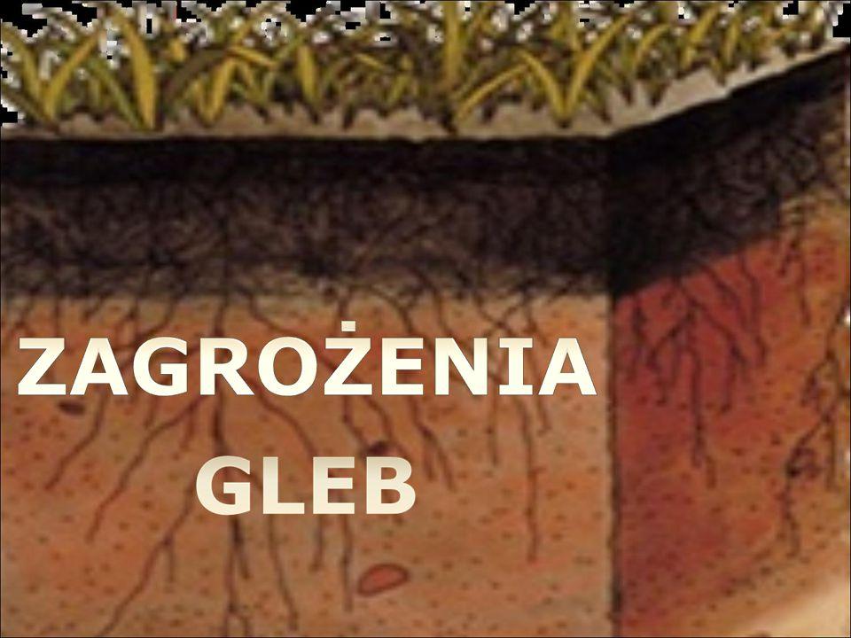 Zasolenie, alkalizacja (pod wpływem niewłaściwego wapnowania i zanieczyszczeń pyłowych) lub zakwaszenie gleb - procesom tym towarzyszy wymywanie w głąb profilu składników pokarmowych, a zwłaszcza potasu.
