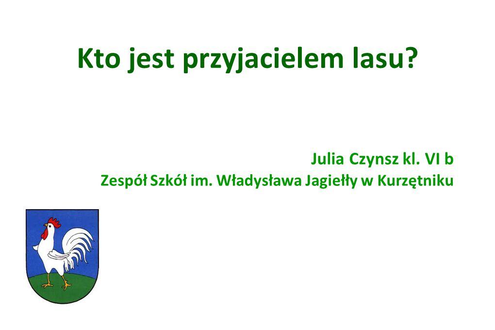 Kto jest przyjacielem lasu? Julia Czynsz kl. VI b Zespół Szkół im. Władysława Jagiełły w Kurzętniku