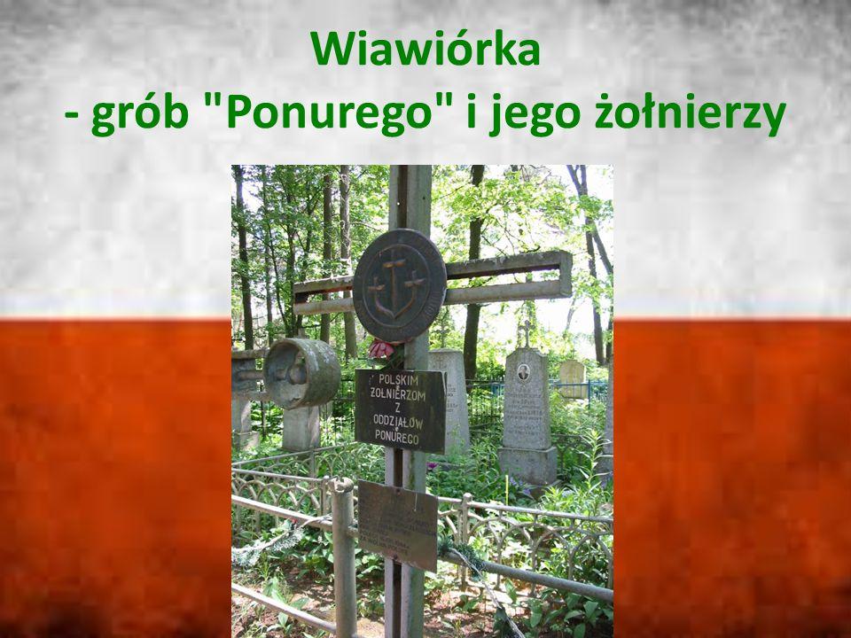 Wiawiórka - grób