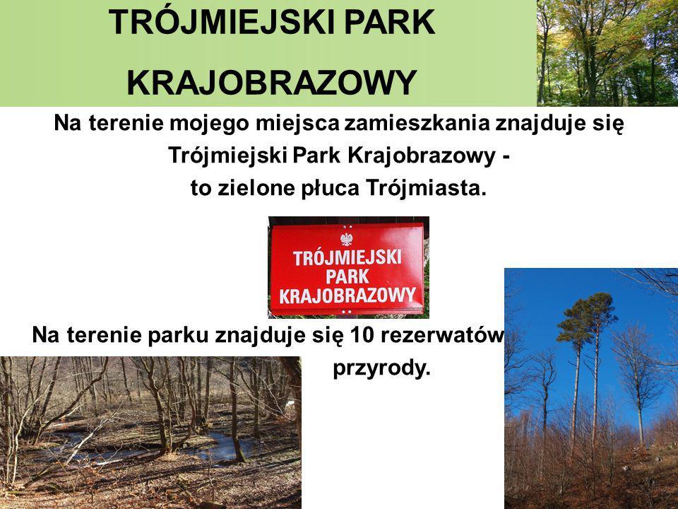 TRÓJMIEJSKI PARK KRAJOBRAZOWY Na terenie mojego miejsca zamieszkania znajduje się Trójmiejski Park Krajobrazowy - to zielone płuca Trójmiasta. Na tere