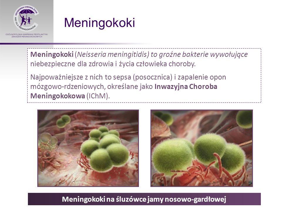 Drogi zakażenia, nosicielstwo Do zakażenia dochodzi poprzez kontakt z osobą chorą lub bezobjawowym nosicielem Co czwarty nastolatek może być bezobjawowym nosicielem Szacuje się, że u około 20-40% osób meningokoki bytują w jamie nosowo- gardłowej, nie powodując żadnych objawów ani dolegliwości.