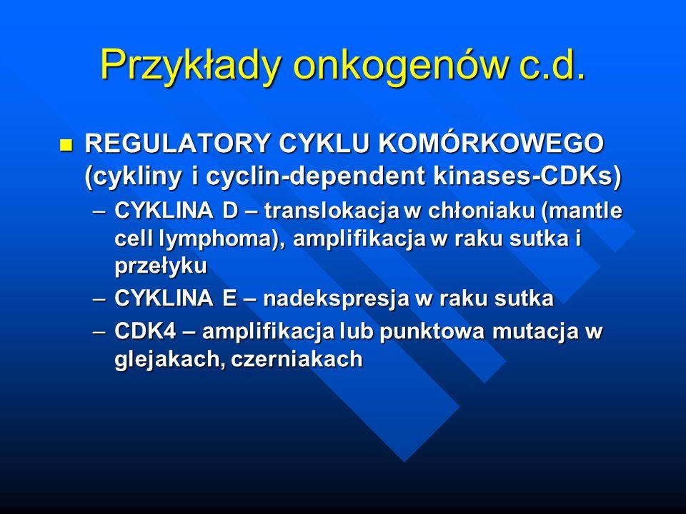 Przykłady onkogenów c.d. REGULATORY CYKLU KOMÓRKOWEGO (cykliny i cyclin-dependent kinases-CDKs) REGULATORY CYKLU KOMÓRKOWEGO (cykliny i cyclin-depende