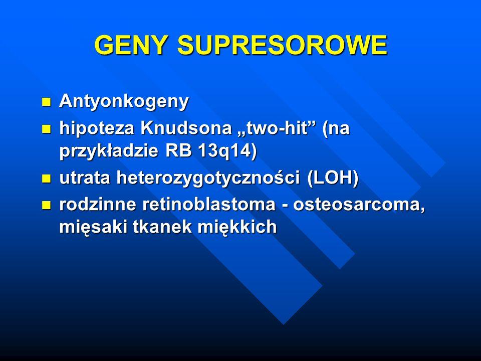 """GENY SUPRESOROWE Antyonkogeny Antyonkogeny hipoteza Knudsona """"two-hit"""" (na przykładzie RB 13q14) hipoteza Knudsona """"two-hit"""" (na przykładzie RB 13q14)"""