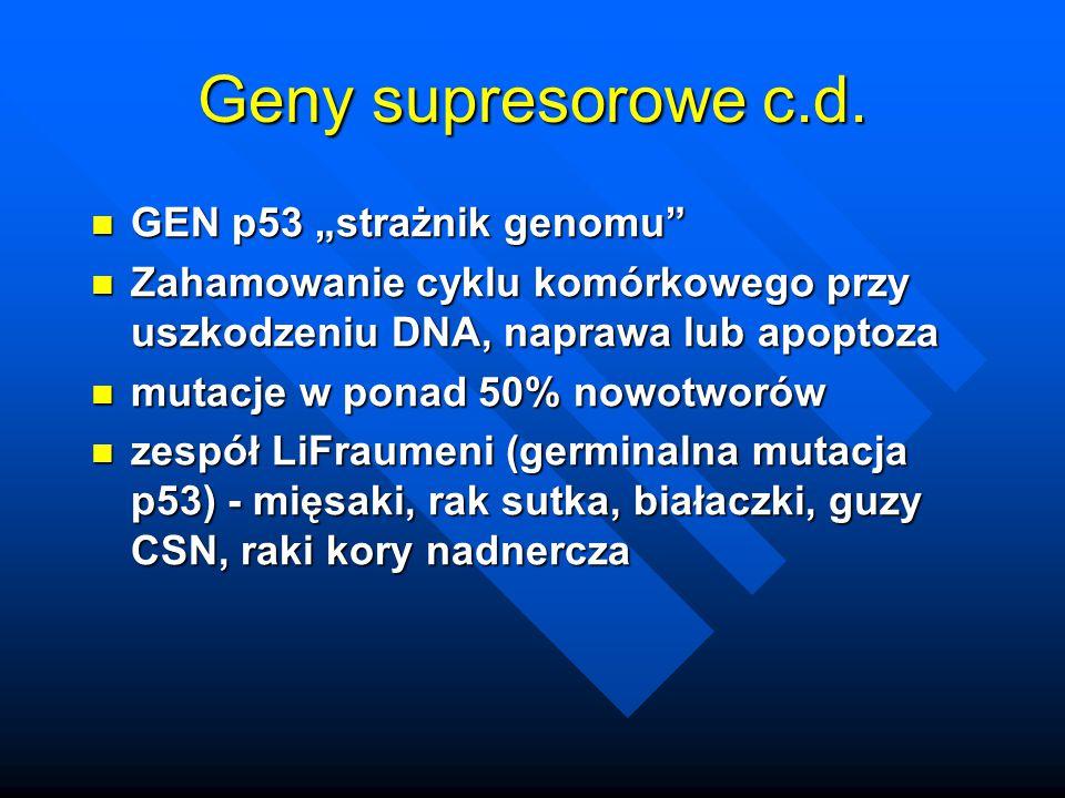 """Geny supresorowe c.d. GEN p53 """"strażnik genomu"""" GEN p53 """"strażnik genomu"""" Zahamowanie cyklu komórkowego przy uszkodzeniu DNA, naprawa lub apoptoza Zah"""
