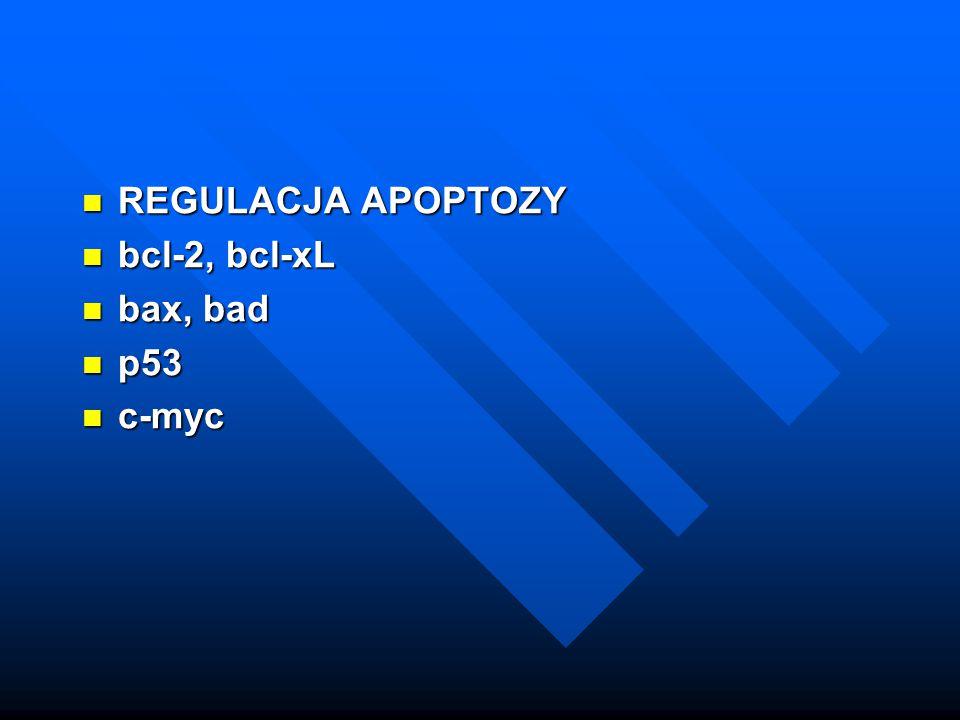 REGULACJA APOPTOZY REGULACJA APOPTOZY bcl-2, bcl-xL bcl-2, bcl-xL bax, bad bax, bad p53 p53 c-myc c-myc