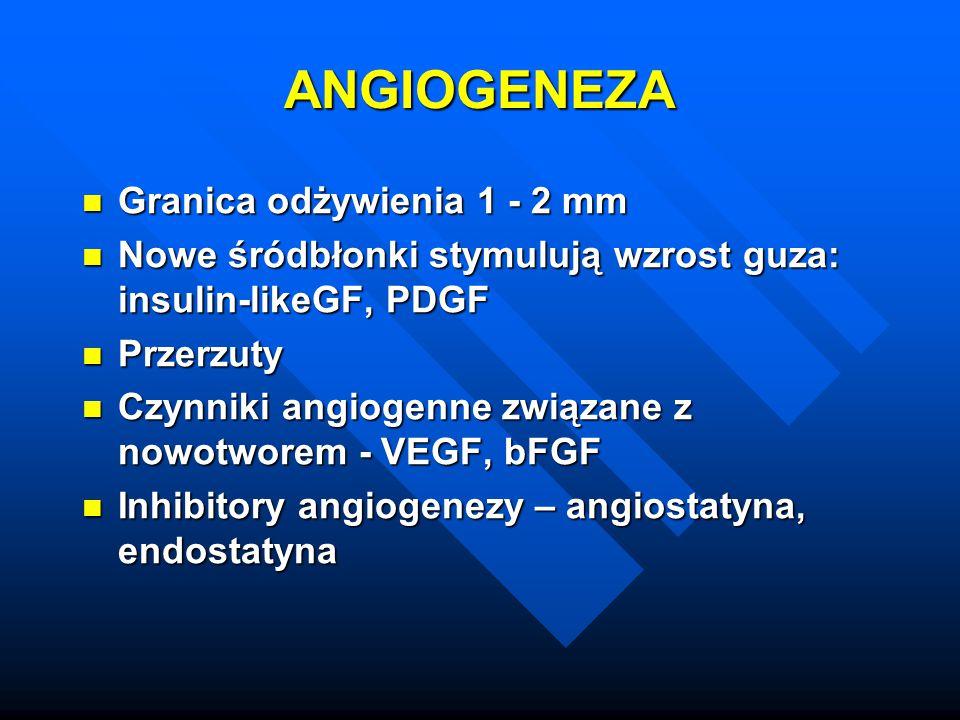ANGIOGENEZA Granica odżywienia 1 - 2 mm Granica odżywienia 1 - 2 mm Nowe śródbłonki stymulują wzrost guza: insulin-likeGF, PDGF Nowe śródbłonki stymul