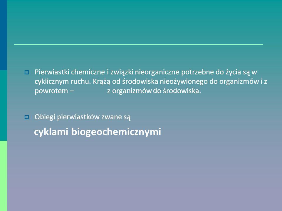  Pierwiastki chemiczne i związki nieorganiczne potrzebne do życia są w cyklicznym ruchu.
