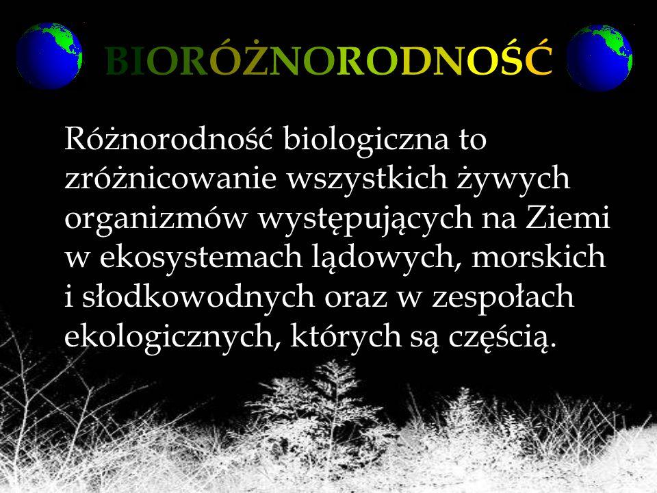 BIORÓŻNORODNOŚĆ Różnorodność biologiczna to zróżnicowanie wszystkich żywych organizmów występujących na Ziemi w ekosystemach lądowych, morskich i słod