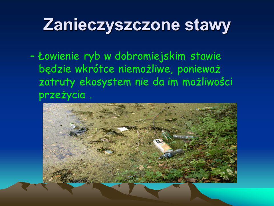 Zanieczyszczone stawy –Łowienie ryb w dobromiejskim stawie będzie wkrótce niemożliwe, ponieważ zatruty ekosystem nie da im możliwości przeżycia.