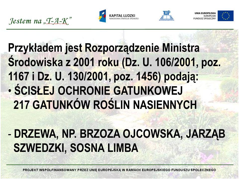 Przykładem jest Rozporządzenie Ministra Środowiska z 2001 roku (Dz.