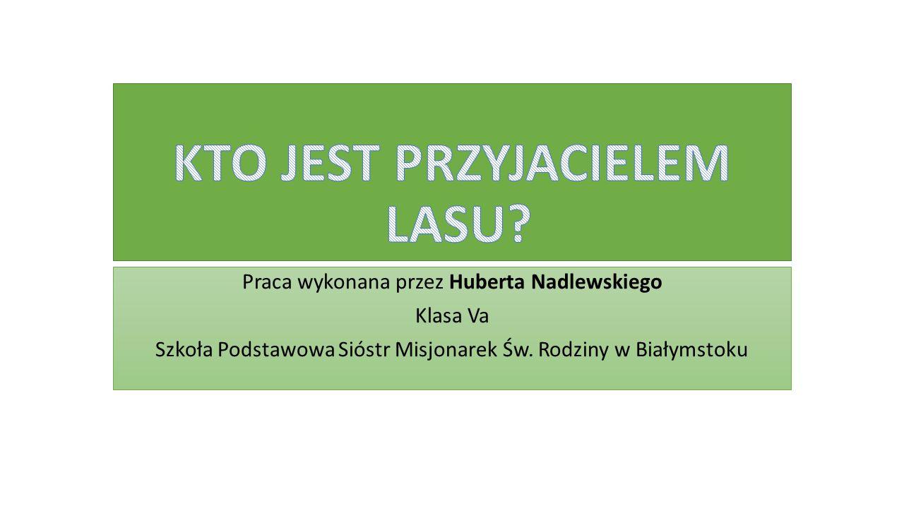 Praca wykonana przez Huberta Nadlewskiego Klasa Va Szkoła Podstawowa Sióstr Misjonarek Św.