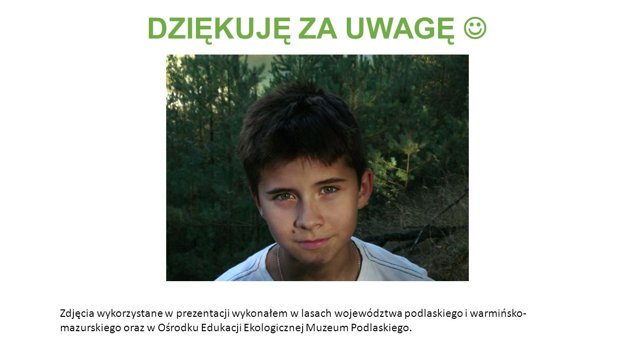 DZIĘKUJĘ ZA UWAGĘ Zdjęcia wykorzystane w prezentacji wykonałem w lasach województwa podlaskiego i warmińsko- mazurskiego oraz w Ośrodku Edukacji Ekologicznej Muzeum Podlaskiego.