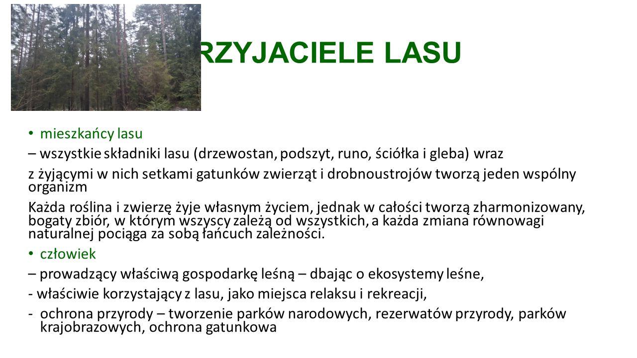 PRZYJACIELE LASU mieszkańcy lasu – wszystkie składniki lasu (drzewostan, podszyt, runo, ściółka i gleba) wraz z żyjącymi w nich setkami gatunków zwierząt i drobnoustrojów tworzą jeden wspólny organizm Każda roślina i zwierzę żyje własnym życiem, jednak w całości tworzą zharmonizowany, bogaty zbiór, w którym wszyscy zależą od wszystkich, a każda zmiana równowagi naturalnej pociąga za sobą łańcuch zależności.
