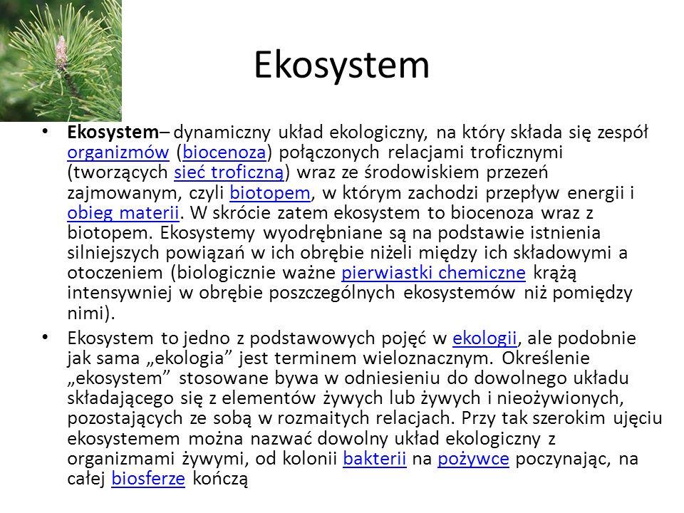 Ekosystem Ekosystem– dynamiczny układ ekologiczny, na który składa się zespół organizmów (biocenoza) połączonych relacjami troficznymi (tworzących sie