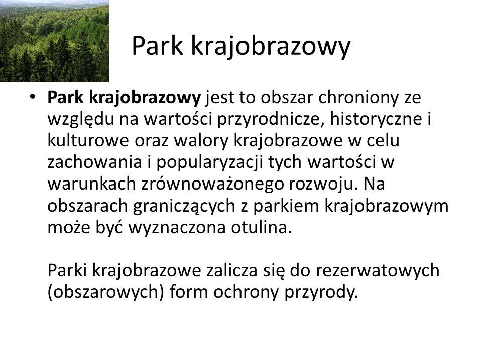 Park krajobrazowy Park krajobrazowy jest to obszar chroniony ze względu na wartości przyrodnicze, historyczne i kulturowe oraz walory krajobrazowe w c