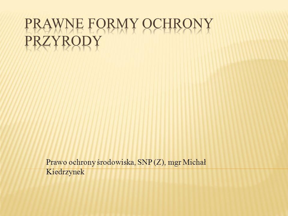 Prawo ochrony środowiska, SNP (Z), mgr Michał Kiedrzynek