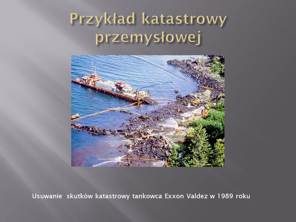 Usuwanie skutków katastrowy tankowca Exxon Valdez w 1989 roku