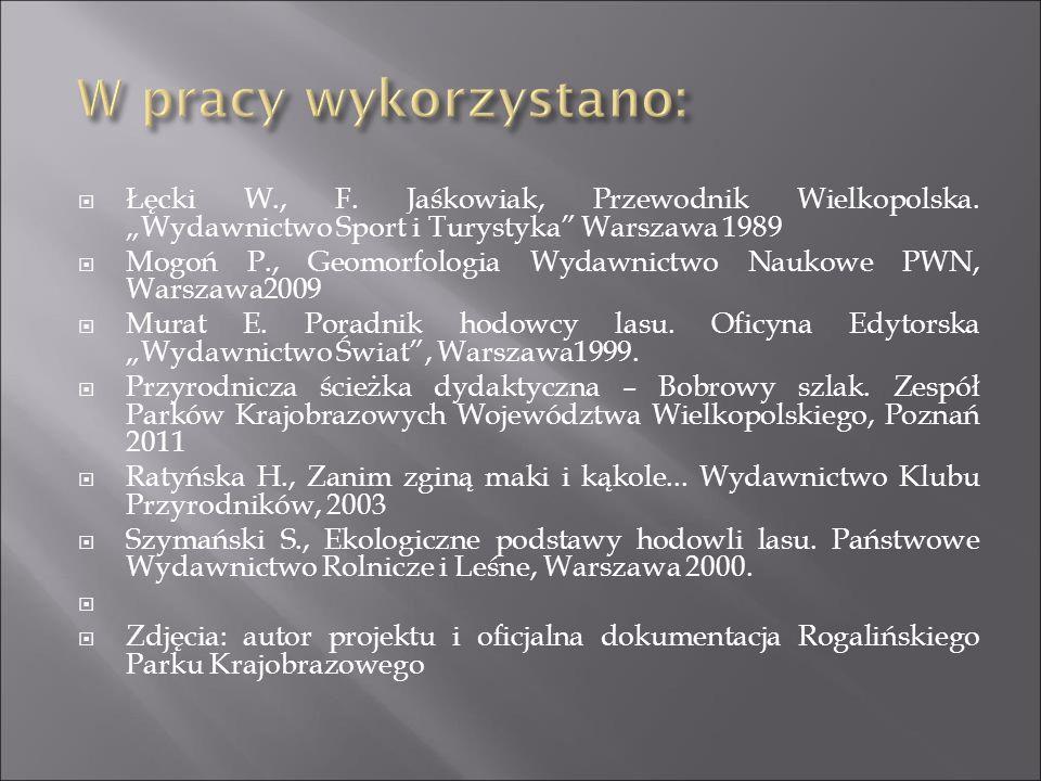 """ Łęcki W., F. Jaśkowiak, Przewodnik Wielkopolska. """"Wydawnictwo Sport i Turystyka"""" Warszawa 1989  Mogoń P., Geomorfologia Wydawnictwo Naukowe PWN, Wa"""