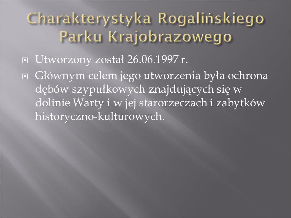 SSzacowana wielkość Rogalińskiego Parku Krajobrazowego, wynosi 12750 ha.