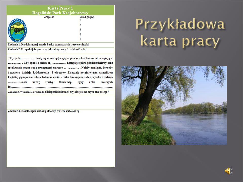  Łęcki W., F.Jaśkowiak, Przewodnik Wielkopolska.