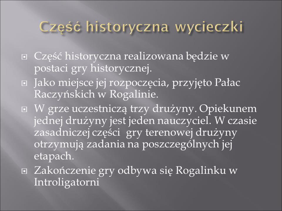  Część historyczna realizowana będzie w postaci gry historycznej.  Jako miejsce jej rozpoczęcia, przyjęto Pałac Raczyńskich w Rogalinie.  W grze uc