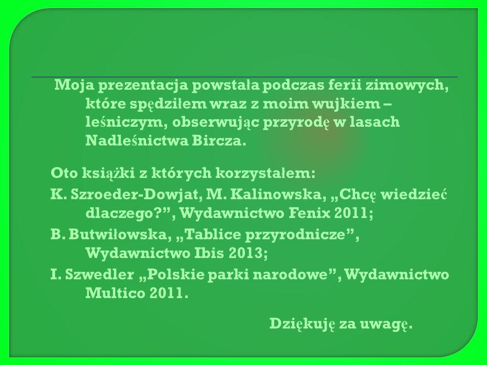 Je ż ż ywi si ę g ł ównie jab ł kami, owadami a tak ż e ż mijami np.