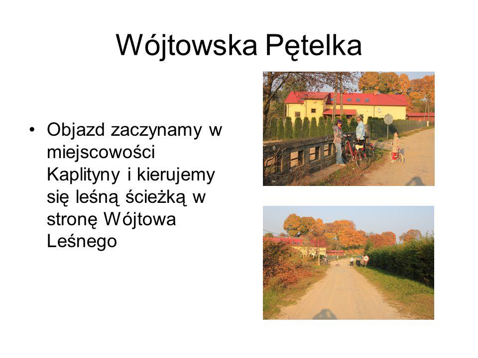 Wójtowska Pętelka Objazd zaczynamy w miejscowości Kaplityny i kierujemy się leśną ścieżką w stronę Wójtowa Leśnego