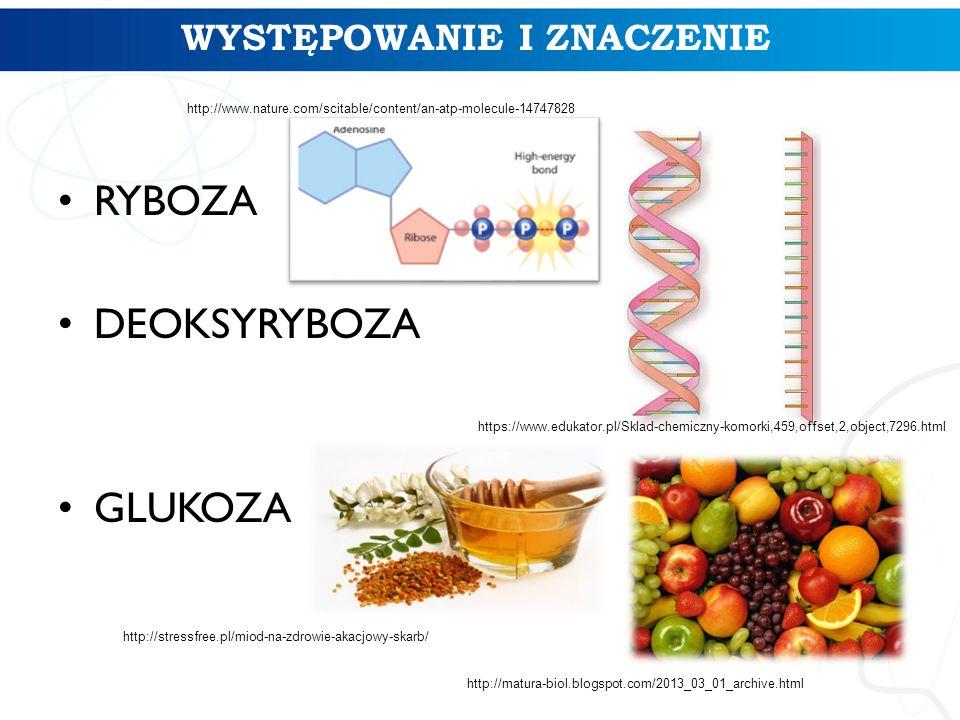 WYSTĘPOWANIE I ZNACZENIE RYBOZA DEOKSYRYBOZA GLUKOZA FRUKTOZA http://matura-biol.blogspot.com/2013_03_01_archive.html http://stressfree.pl/miod-na-zdr