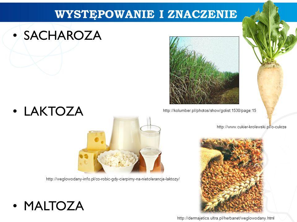 WYSTĘPOWANIE I ZNACZENIE SACHAROZA LAKTOZA MALTOZA http://www.cukier-krolewski.pl/o-cukrze http://kolumber.pl/photos/show/golist:1530/page:15 http://w