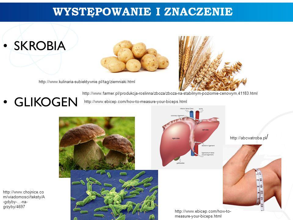 WYSTĘPOWANIE I ZNACZENIE SKROBIA GLIKOGEN http://www.kulinaria-subiektywnie.pl/tag/ziemniaki.html http://www.farmer.pl/produkcja-roslinna/zboza/zboza-