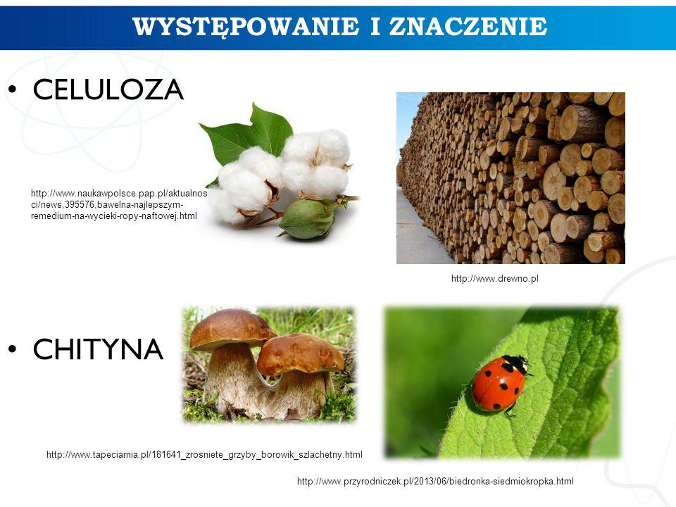 WYSTĘPOWANIE I ZNACZENIE CELULOZA CHITYNA http://www.naukawpolsce.pap.pl/aktualnos ci/news,395576,bawelna-najlepszym- remedium-na-wycieki-ropy-naftowe