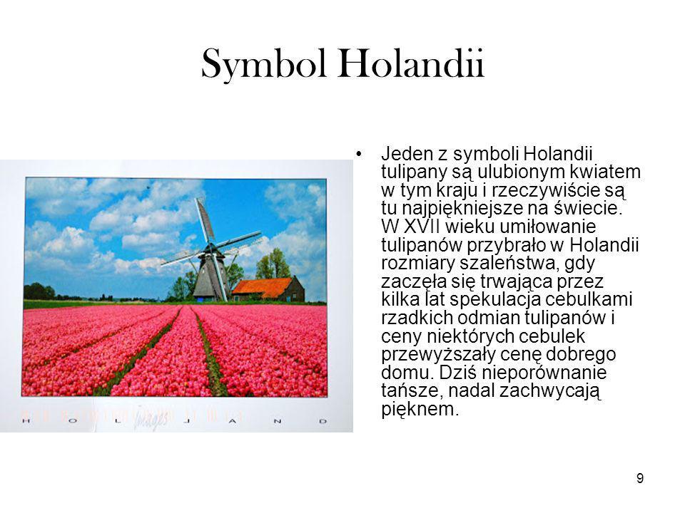9 Symbol Holandii Jeden z symboli Holandii tulipany są ulubionym kwiatem w tym kraju i rzeczywiście są tu najpiękniejsze na świecie. W XVII wieku umił